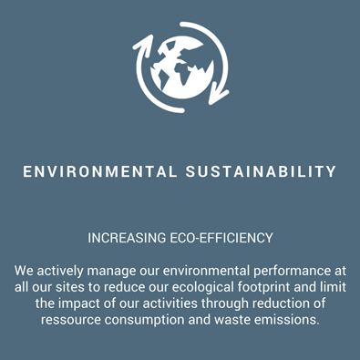 environmental-sustainability-infographie