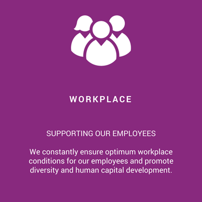 workplace-infographie