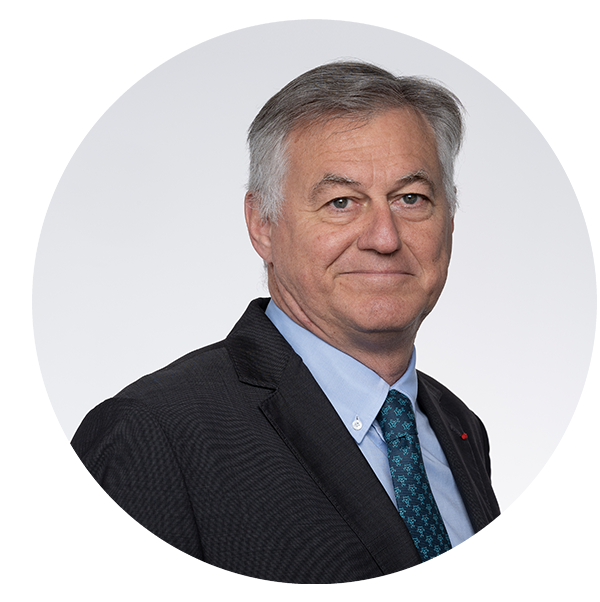 Portrait of Patrick Sayer,Valeo Board Member