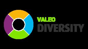 Valeo Diversity logo